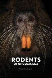 http://kezhlednuti.online/rodents-of-unusual-size-100454
