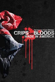 http://kezhlednuti.online/crips-and-bloods-made-in-america-10555
