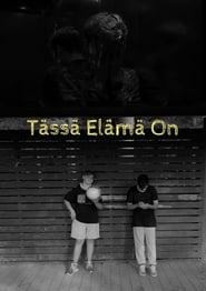 http://filmzdarma.online/kestazeni-tassa-elama-on-105734