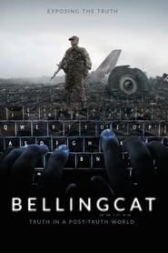 http://filmzdarma.online/kestazeni-bellingcat-truth-in-a-post-truth-world-105997