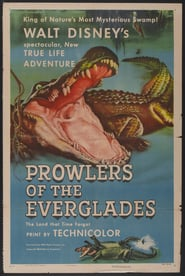 http://kezhlednuti.online/prowlers-of-the-everglades-107044