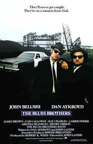 http://filmzdarma.online/kestazeni-bratri-bluesovi-1077