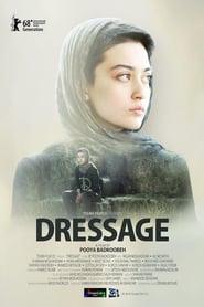 http://filmzdarma.online/kestazeni-dressage-109327