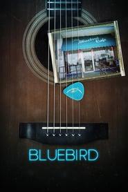 http://filmzdarma.online/kestazeni-bluebird-110139
