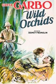 http://filmzdarma.online/kestazeni-wild-orchids-111265