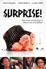 http://filmzdarma.online/kestazeni-the-surprise-113417