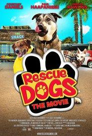http://filmzdarma.online/kestazeni-rescue-dogs-12221