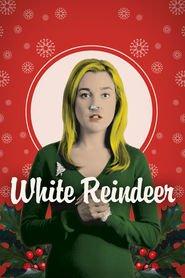 http://filmzdarma.online/kestazeni-white-reindeer-14715