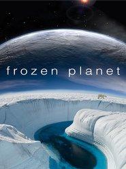http://filmzdarma.online/kestazeni-frozen-planet-16993