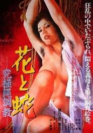 http://filmzdarma.online/kestazeni-hana-to-hebi-kyukyoku-nawa-chokyo-20226