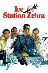 http://filmzdarma.online/kestazeni-polarni-stanice-zebra-20991