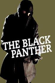 http://filmzdarma.online/kestazeni-the-black-panther-21585