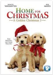 http://filmzdarma.online/kestazeni-a-golden-christmas-3-21786