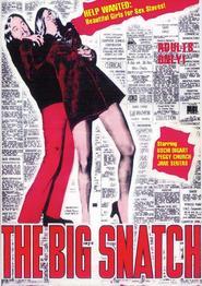 http://filmzdarma.online/kestazeni-the-big-snatch-27937
