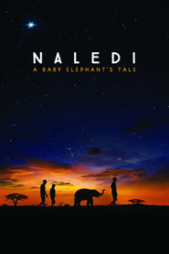 http://filmzdarma.online/kestazeni-naledi-a-baby-elephant-s-tale-29363