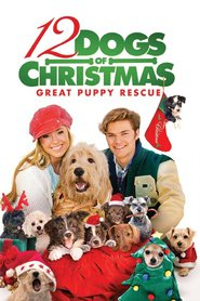 http://kezhlednuti.online/12-dogs-of-christmas-great-puppy-rescue-30452