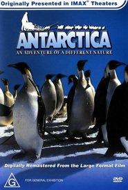http://filmzdarma.online/kestazeni-antarktida-40800