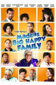 http://filmzdarma.online/kestazeni-madea-s-big-happy-family-48947