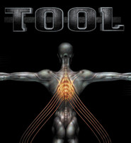 Tool: Salival
