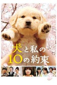http://filmzdarma.online/kestazeni-inu-to-watashi-no-10-no-yakusoku-65272