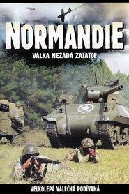http://filmzdarma.online/kestazeni-normandie-68303