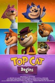 http://filmzdarma.online/kestazeni-top-cat-begins-73647