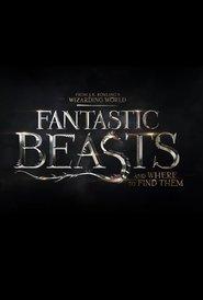 http://filmzdarma.online/kestazeni-fantastic-beasts-and-where-to-find-them-3-82909