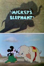 http://filmzdarma.online/kestazeni-mickey-s-elephant-83619