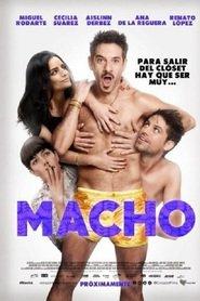 http://filmzdarma.online/kestazeni-macho-84011