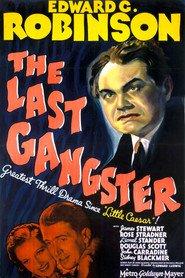 http://filmzdarma.online/kestazeni-the-last-gangster-85827
