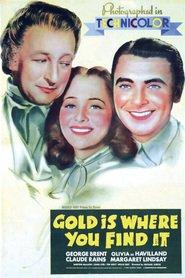 http://filmzdarma.online/kestazeni-gold-is-where-you-find-it-86353