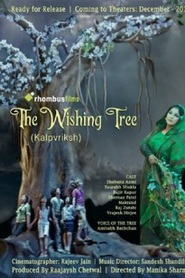 http://kezhlednuti.online/the-wishing-tree-89376