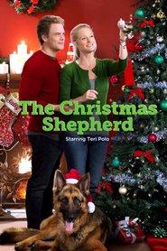 http://filmzdarma.online/kestazeni-the-christmas-shepherd-91418