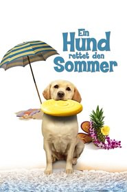 http://kezhlednuti.online/the-dog-who-saved-summer-93621
