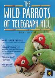 http://kezhlednuti.online/the-wild-parrots-of-telegraph-hill-94563